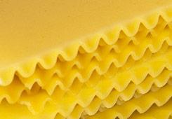 lasagna Shapes Encyclopedia