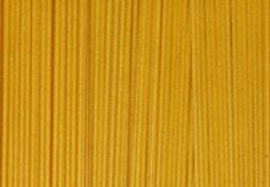 spaghetti Shapes Encyclopedia